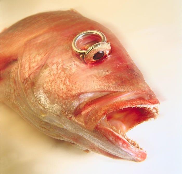 Vis met ring